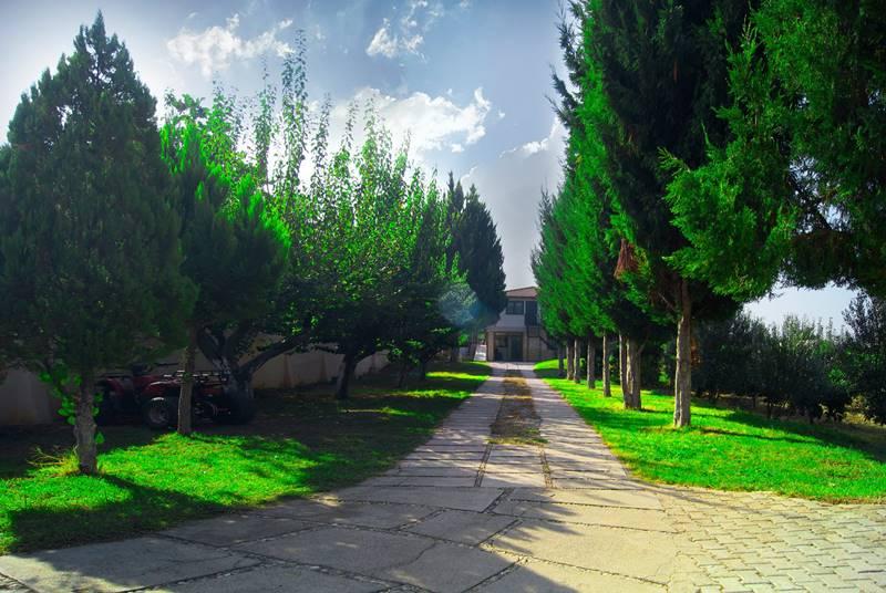 ozel-camli-Konak-Yasli-Bakim-ve-Huzurevi
